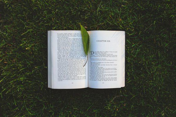 Otwarta książka na trawie z listkiem między stronami